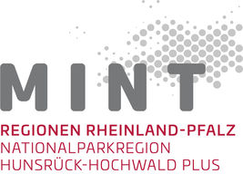 Logo zur MINT-Region